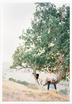 Doubt we could find a tree as perfect as this, but totally want to climb some trees for a photoshoot. :)
