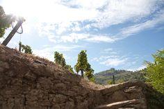 Douro Steinwand