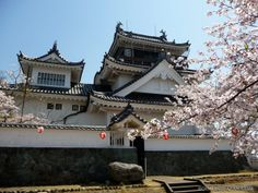 Japanese castles I've visited: #63 Muya Castle in Tokushima Prefecture. It's not too far from the famous Naruto whirlpool.