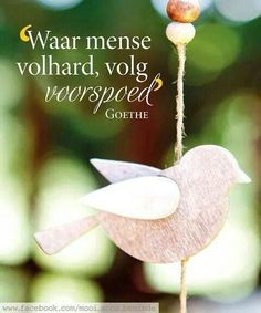__ⓠ Goethe - Waar mens volhard volg voorspoed. Inspiring Quotes About Life, Inspirational Quotes, Motivational, Woman Quotes, Life Quotes, Goeie Nag, Goeie More, Afrikaans Quotes, The Secret Book