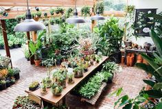 WE'RE HIRING! Are you a plant-loving retail professional with a passion for plants, design and customer service? Join our growing team! Check out the full job posting and application instructions at pistilsnursery.com/employment. Please tag folks you think might be a good fit