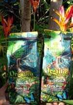Britt Organic Coffee Costa Rica is nourished with organic nutrients extracted from our fields. This traditional cropping eco-system preserves the natural habitat for our diverse fauna and lush flora, assuring cleaner water and more fertile soils for both growers and future generations. Café Britt uses only the finest 100% Arabica Strictly Hard Bean coffee, sun dried, roasted, packaged in Costa Rica and certified Organic by the Organic Crop Improvement Association of America (OCIA).