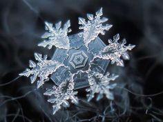 29 incredible close-ups of snowflakes
