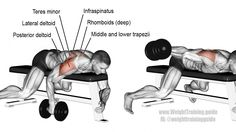 Lying dumbbell one-arm lateral raise exercise