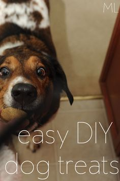 ML: easy DIY dog treats! I don't buy the dogs a lot of toys, but I do like making stuff for them on Christmas and their birthday. I would like to have plenty of stuff on hand for when the baby comes so they don't feel left out. THESE ARE SOOOO EASY! Puppy Treats, Diy Dog Treats, Homemade Dog Treats, Joker, Dog Recipes, Vegan Recipes, Diy Stuffed Animals, Dog Care, I Love Dogs