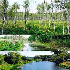 Biebrzański park narodowy #pieknie #osowiec #podlasie