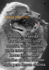 Imagen relacionada Wolf Quotes, Wolf Pictures, Mr Wonderful, Auras, Heart And Mind, Wise Words, My Photos, Nostalgia, Sayings