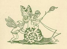 S for Snail: Fairy Riding A Snail