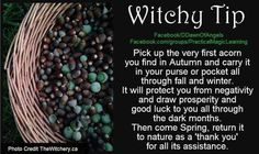 First Autumn Acorn Magick my grandparents did this Wiccan Witch, Magick Spells, Witchcraft, Wiccan Magic, Witch Rituals, Luck Spells, Moon Spells, Eclectic Witch, Hedge Witch