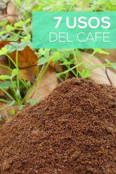 Dish Garden, Vegetable Garden, Container Gardening, Gardening Tips, Paving Ideas, Building A Raised Garden, Fruit Plants, Green Nature, My Secret Garden