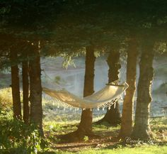 I could dream here in this pretty hammock by the lake.