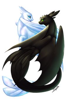 {HTTYD} - Toothless and Light Fury Toothless And Stitch, Toothless Dragon, Httyd Dragons, Cute Dragons, Cute Fantasy Creatures, Mythical Creatures, Cute Disney, Disney Art, Croque Mou