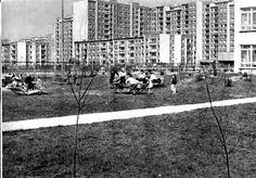 Jelonki Północne, ogródek przedszkola przy ul.Czumy