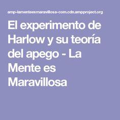 El experimento de Harlow y su teoría del apego - La Mente es Maravillosa