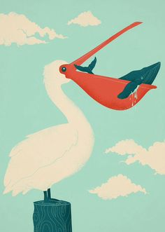 The big catch - Jay Fleck