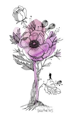 17 Best images about Drawing-India Illustration Botanique, Art Et Illustration, Floral Illustrations, Botanical Illustration, Watercolor And Ink, Watercolor Flowers, Watercolor Paintings, Inspiration Art, Art Inspo