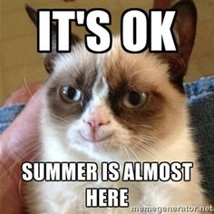 It's ok Summer is almost here  | Grumpy Cat Smile