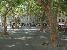 http://static.panoramio.com/photos/original/398442.jpg Uzes, France!