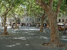 http://static.panoramio.com/photos/original/398442.jpg Uzes, France!