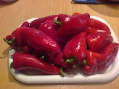 Výborná čalamáda s receptom z Maďarska (fotorecept) - recept   Varecha.sk Ale, Stuffed Peppers, Vegetables, Food, Ale Beer, Stuffed Pepper, Essen, Vegetable Recipes, Meals