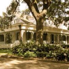 Myrtles Plantation, St. Francisville. most haunted place in Louisiana. Check
