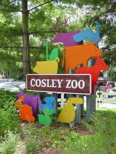 Cosley Zoo in Wheaton. Small, tot-friendly zoo with farm animals and some Illinois/Midwest forest animals.