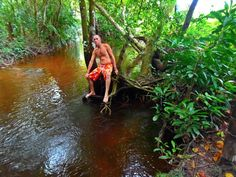 CelloArnour - Curuçá - Ourém Pa - Brasil