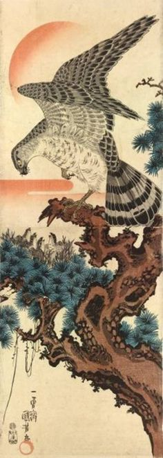 Series: None  Title: None  Size: Kakemono-e (a vertical diptych approximately 28 by 10 inches or 72 by 25 centimeters)  Description: A hawk in an old pine tree  Date: c. 1845  Publisher: Mura-ya Seijirô