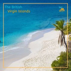 Who else is dreaming of where they're going to travel to when the world's travel restrictions have been lifted?   We're imagining a relaxing break in the sun in the stunning British Virgin Islands.   Where will you be heading to? Best Hotel Deals, Best Hotels, British Virgin Islands, Saving Money, Travel Inspiration, Around The Worlds, Sun, Beach, Water