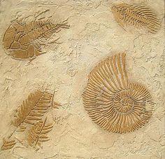 Prehistoric Ferns Fossil Stencil  See more Fossil stencils: http://www.cuttingedgestencils.com/fossil-stencils-fossils-wall-stencils.html