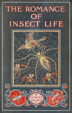 The Romance of Insect Life, written by Edmund Selous, with cover by Carton Moore-Park, and B&W illustrations by Lancelot Speed and Carton Moore-Park throughout. Natural history stories from the insect world, published by Seeley & Co, London, 1907