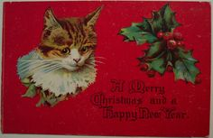 Vintage Christmas Postcard - Cat | Flickr - Photo Sharing!