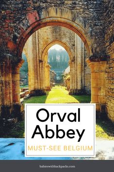 Orval Abbey pin