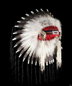 Feathers mean a lot to Native American Tribes. It symbolizes trust, honor, strength, wisdom, power, freedom and many more things. To be given one of these is to be hand picked out of the rest of the men in the tribe – it's like getting a gift from a high official. http://bit.ly/VEasHV