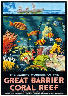 Great Barrier Coral Reef, Australia vintage travel poster by Percy Trompf, 1933 Vintage Travel Posters, Vintage Postcards, Posters Australia, Australian Vintage, Photo Vintage, Great Barrier Reef, Advertising Poster, Australia Travel, Queensland Australia