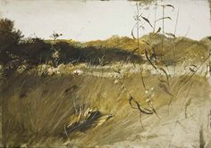 Andrew Wyeth Watercolor Paintings | House Andrew Wyeth Author Andrew,Wyeth - Art Gallery- Watercolor ...