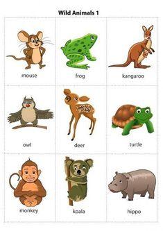 Карточки с животными на английском языке   МАМА И МАЛЫШ