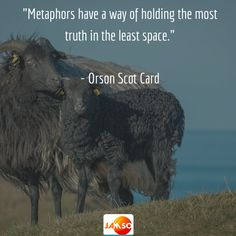 """""""Metaphors have a way of holding the most truth in the least space."""" - Orson Scot Card"""