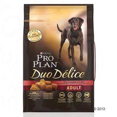 Animalerie  Pro Plan Duo Délice saumon riz pour chien  10 kg