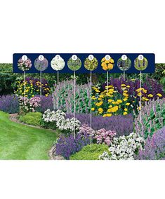 Collection for massive & # Fragrance & # & # Perfect Mix & Match Mix. - Collection for massive & # Fragrance & # & # Perfect Mix & Match Mixed Frag … - Small Cottage Garden Ideas, Garden Yard Ideas, Garden Cottage, Landscape Design, Garden Design, Blue And Purple Flowers, Garden Planning, Backyard Landscaping, Amazing Gardens