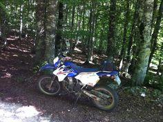 Suzuki DRZ 400 S - Tra i boschi di Campo Imperatore-Abruzzo- Italia.