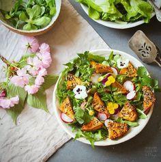 Salade, radis, tofu grillés et graines de sésame