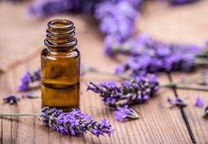 Remedies For Sleep lavender-essential-oils-for-sleep - If you're struggling with getting a good night's sleep, then essential oils for sleep may be what you need as a natural treatment to aid in sleep Huile Tea Tree, Tea Tree Oil, Lavender Flowers, Lavender Oil, Lavender Sleep, Lavender Plants, Lavender Fields, Best Essential Oils, Essential Oil Blends