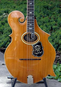 Only known 3-point Orville Gibson mandocello, front