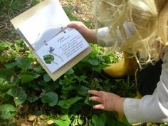 Make a Herbarium....a small book for kids to make to remind them what the plants growing around them are and what they are used for.