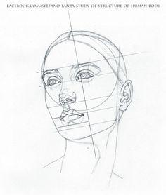 Study+by+StefanoLanza.deviantart.com+on+@DeviantArt