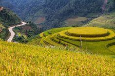 Mu Cang Chai, geometría de paralelas vegetales: campos de arroz en las montañas vietnamitas. | Matemolivares