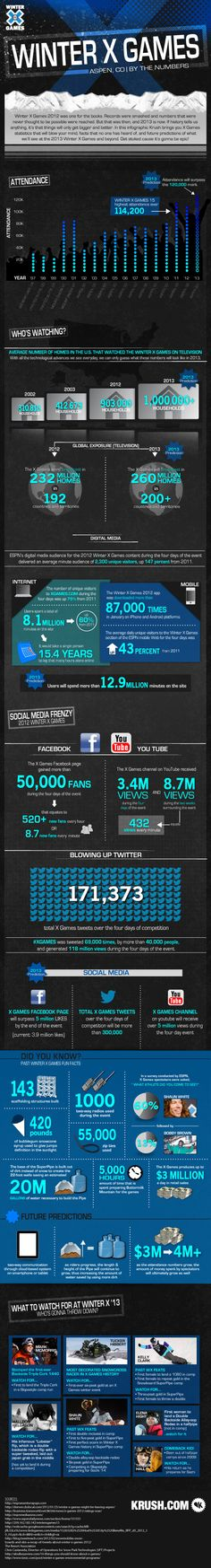 Winter X Games infographic