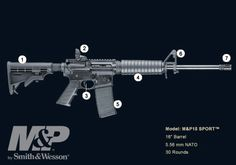 - Smith & Wesson M&P 15 sport....$700
