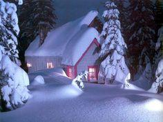 Winter Wonderland Perfection